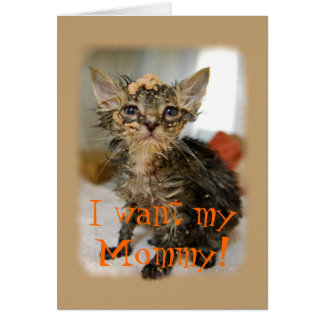 I Want My Mommy! Messy Kitten Card