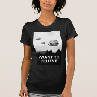 I want to believe (but I can't) - Court constit