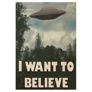 I want to believe! wood poster