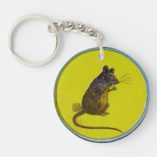 """""""I Want To Get Out"""" Vintage Mouse Trap Thaumatrope Keychain"""