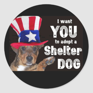 I want YOU to adopt a SHELTER DOG Classic Round Sticker