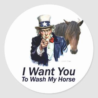 I Want You: To Wash My Horse Classic Round Sticker