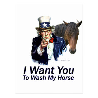 I Want You: To Wash My Horse Postcard