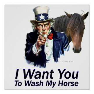 I Want You:  To Wash My Horse Poster