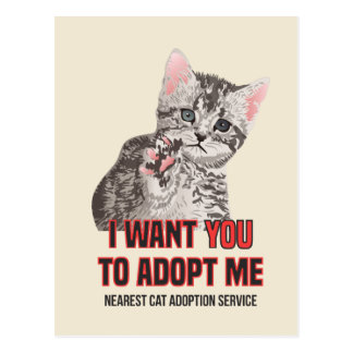 I Want Yout to Adopt Me on Cat Adoption Service Postcard