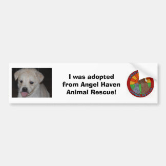 I was adopted! Bumper Sticker