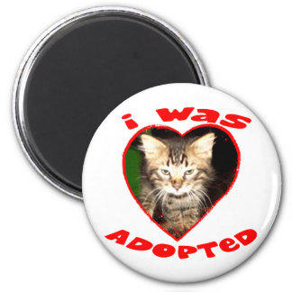 I was Adopted Magnets