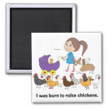 I was Born to Raise Chickens Magnet