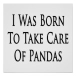 I Was Born To Take Care Of Pandas Poster