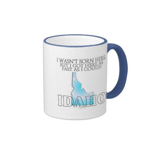I wasn't born here...Idaho Mugs