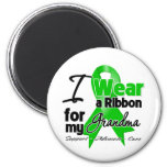 I Wear a Green Ribbon For My Grandma Magnet