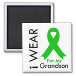 I Wear a Green Ribbon For My Grandson Refrigerator Magnet