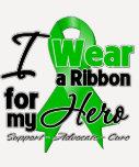 I Wear a Green Ribbon For My Hero T Shirt