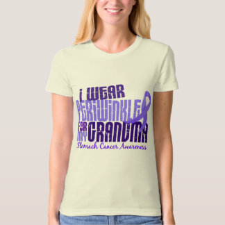 I Wear Periwinkle For Grandma 6.4 Stomach Cancer T-Shirt