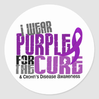 I Wear Purple For Brother-In-Law 6 Crohn's Disease Classic Round Sticker