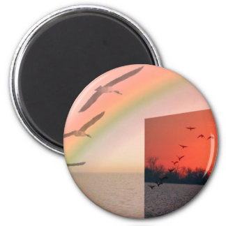 I wish I could fly 2 Inch Round Magnet