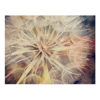 I Wish... - Postcard