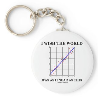 I Wish The World Was As Linear As This (Stats) Key Chains