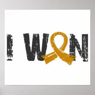 I Won Appendix Cancer Poster