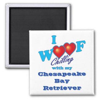 I Woof Chesapeake Bay Retriever 2 Inch Square Magnet