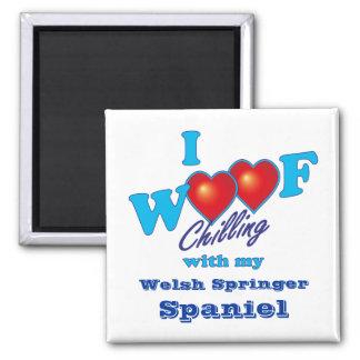 I Woof Welsh Springer Spaniel 2 Inch Square Magnet