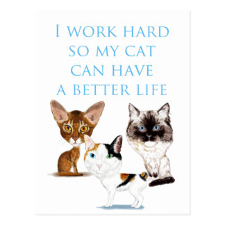 I Work Hard Post Card