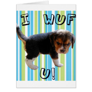 I Wuf U Puppy Love Greeting Card