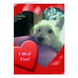 I Wuf You Valentines' Day Westie Card at Zazzle