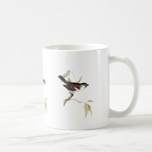 Iago Sparrow Classic White Coffee Mug