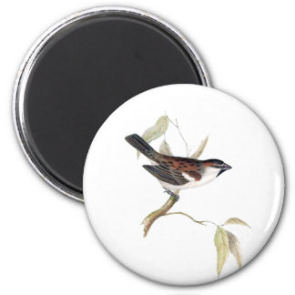 Iago Sparrow 2 Inch Round Magnet