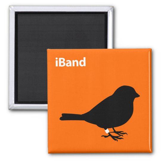 iBand Magnet