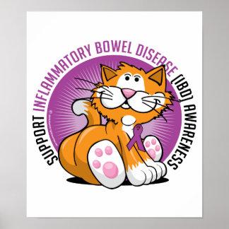 IBD Cat Poster