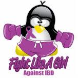 IBD que lucha el pingüino Fotoescultura Vertical