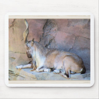 Ibex38 Mouse Pad