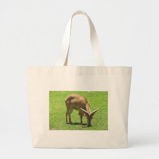 Ibex Tote Bags