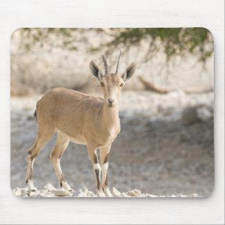Ibex - Yael Mouse Pad