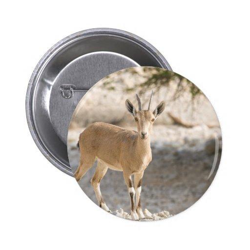 Ibex - Yael Pinback Button