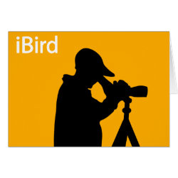 iBird Orange Greeting Card