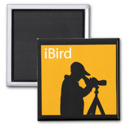 Square Magnet with iBird Orange design