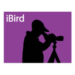 Postcard with iBird Purple design