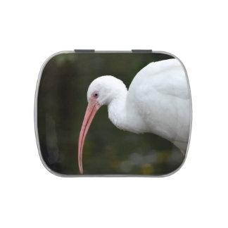 ibis bird head down blue eye image jelly belly tin