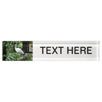 ibis bird standing on fence plants feeder desk name plate