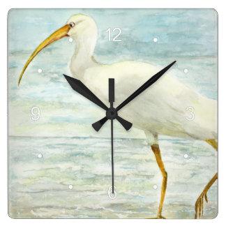 Ibis blanco en la pintura de la acuarela de la reloj cuadrado