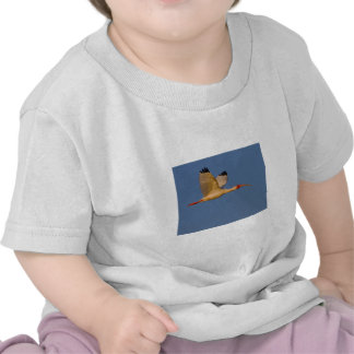 Ibis blanco en vuelo camiseta