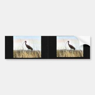Ibis Blanco-hecho frente Pegatina Para Auto