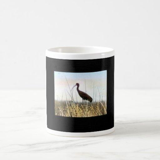 Ibis Blanco-hecho frente Tazas De Café