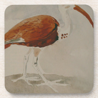 Ibis by Gustave Moreau Drink Coaster