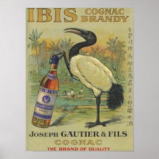 Ibis Cognac - Joseph Gautier & Fils Promo Print