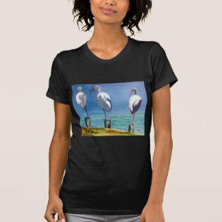 Ibis Design T-Shirt