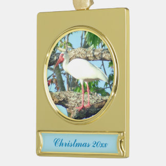 Ibis in Goldenrain  Dated Gold Plated Banner Ornament